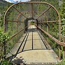 Kootenai Falls Bridge by rocamiadesign