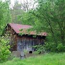 Old Barn by Junebug60