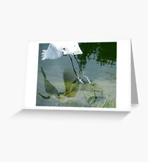 Reflection of an Egret in Flight Greeting Card