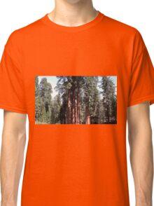 Redwoods Classic T-Shirt