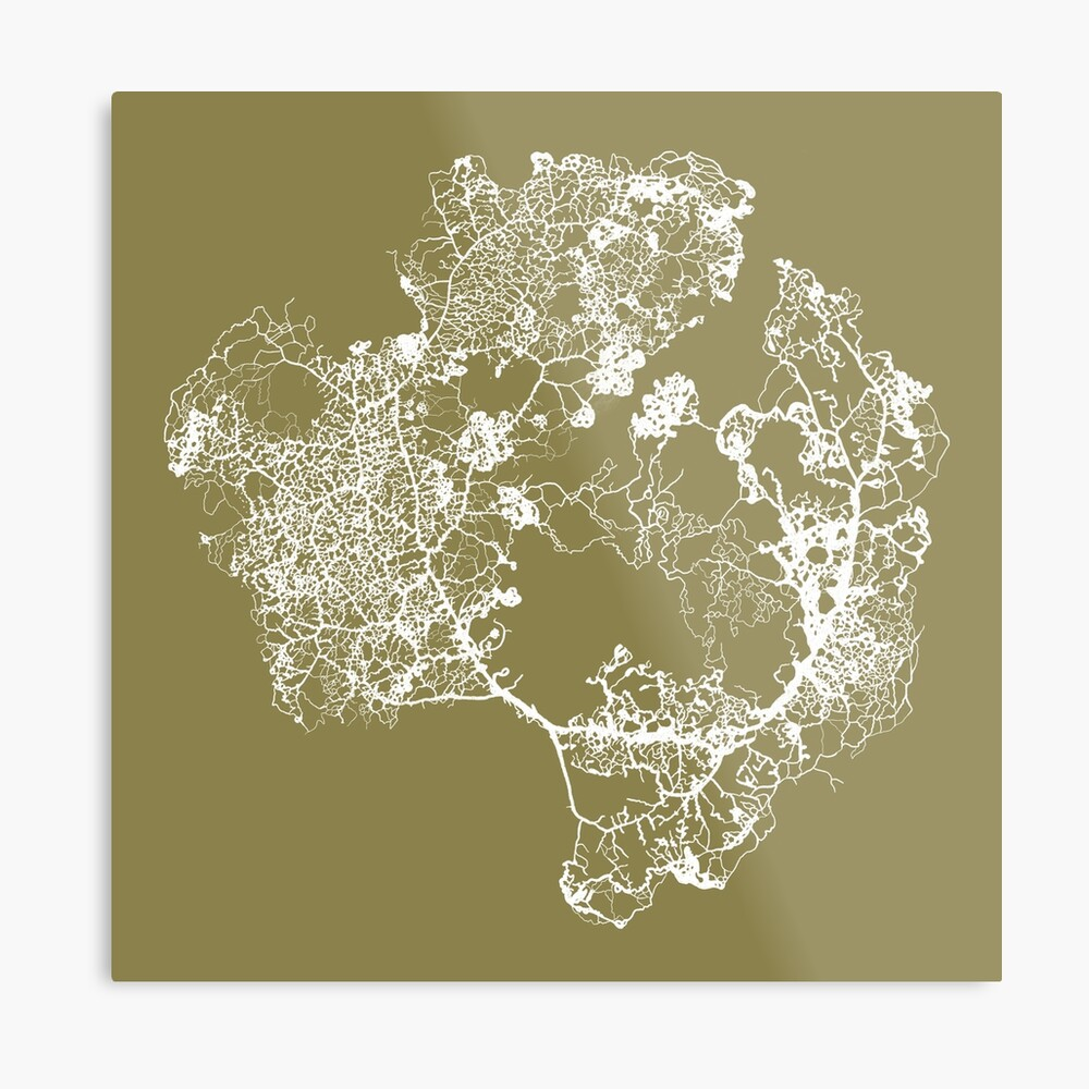 Physarum Polycephalum Metal Print