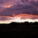 sunset in marybrook west australia by Bettysplace