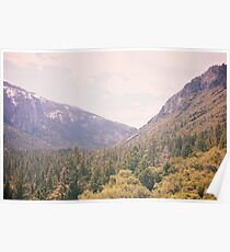Yosemite forest Poster