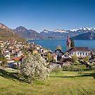 Lake Lucerne at Weggis, Switzerland by Mark Howells-Mead