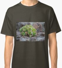 Lonely Cacti Classic T-Shirt