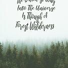 Quickest Way To Universe Through Forest Wilderness by Zehda