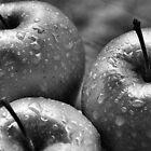We Three Apples by Sheri Nye