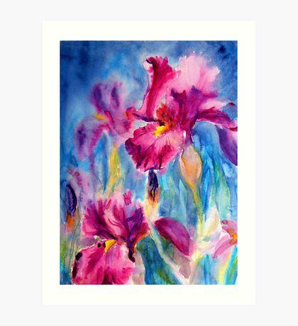 Iris Carnival Art Print