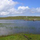 Loch Roinavat in der nordischen Mühle von lezvee