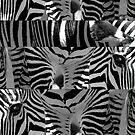 Z iz For Animalz With Stripez by paintingsheep