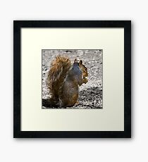 I know you are behind me! Framed Print