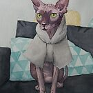 Sphinx cat on a sofa wearing a jumper - watercolor by DanielaFurini