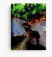 elves Canvas Print