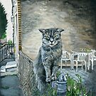 Cat on Fence by minorsaint