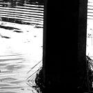 Flood Debris by PhoenixArt
