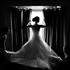 The Window by Daniel Sheehan