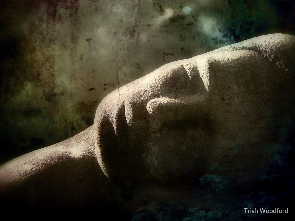 She Sleeps... by Trish Woodford