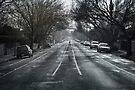Barkley Street, Winter 2010  by Christine Wilson