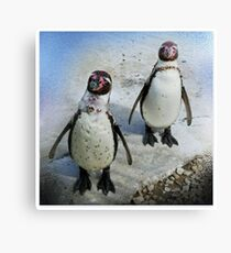 Smile Please ! Canvas Print