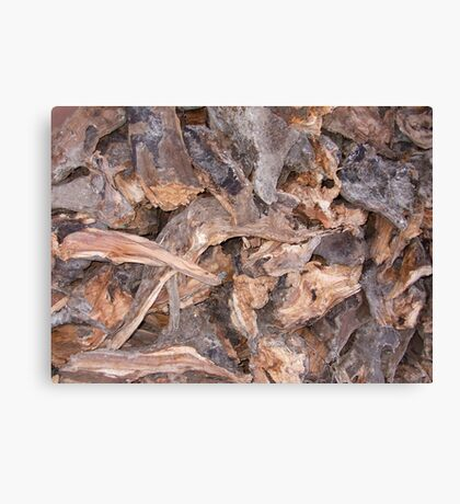 Woodpile in Winter Canvas Print