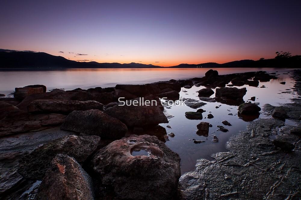 Dusk 2 by Suellen Cook