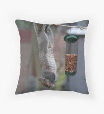 Squirrel 1 - Just hanging around! Throw Pillow