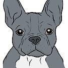 Blue French Bulldog  by rmcbuckeye
