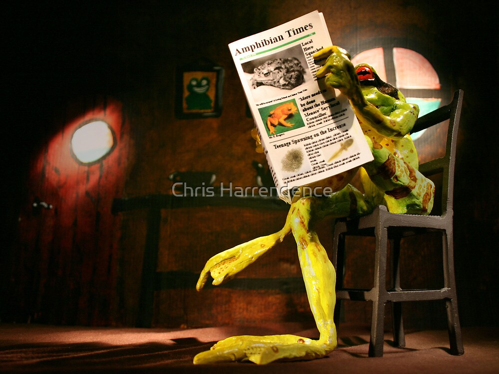Frog News by Chris Harrendence