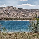 Flaming Gorge  by Melissa  Hintz