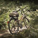 Red Bike by DAntas