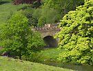 Bridge at Alnwick by Carol Bleasdale