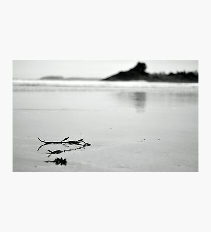 Beach scene nice and sorene  Photographic Print