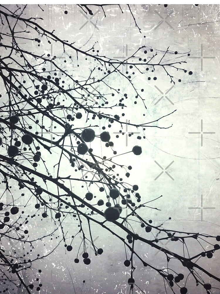 Silver Sky Photo Art  - Bare Tree in Winter Artwork - Neutral Colors - Black and White Nature Art by OneDayArt