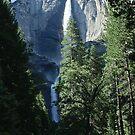 Yosemite Falls by Phillip M. Burrow