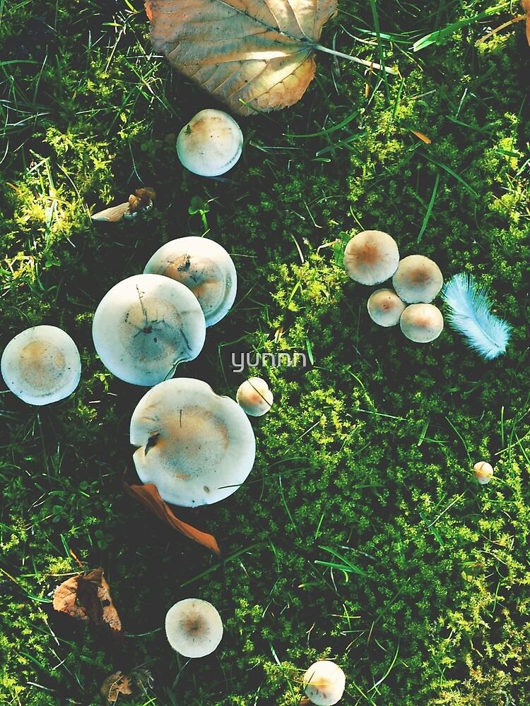 Tiny shrooms by yunnn