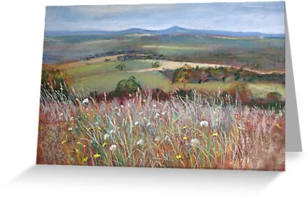 'Meadow Grasses, Anzac Hill' (Seymour) by Lynda Robinson