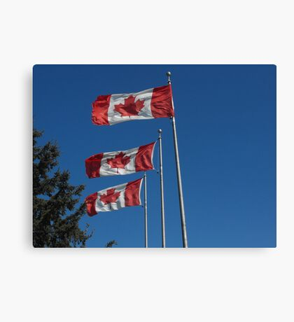 Canada Day! Canvas Print