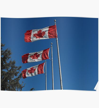 Canada Day! Poster