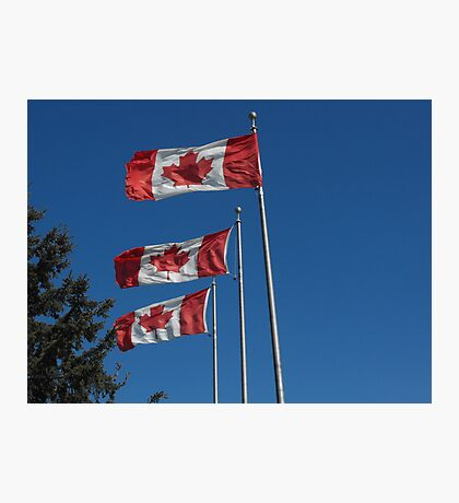 Canada Day! Photographic Print