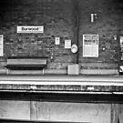Burwood Station, Sydney by Ashlee Betteridge