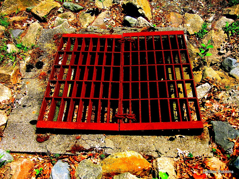 It's A Grate Day! by Debbie Robbins