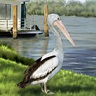 Pelican Pondering by Ann Nightingale