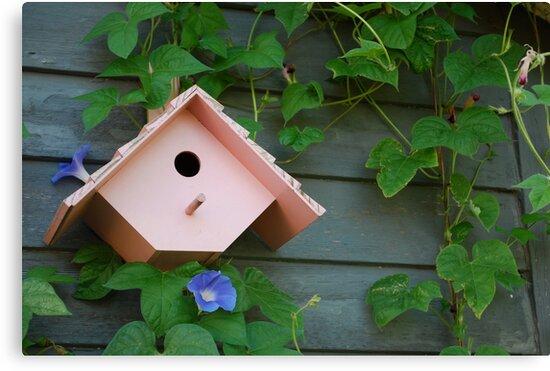 Birdhouse with Morning Glories by Suz Garten