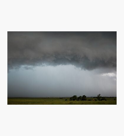 Stormy Kansas Sky with Cows Photographic Print