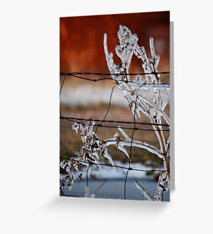 Ice on Weed Greeting Card