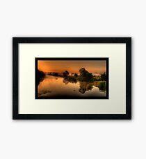 Lone Swan Framed Print