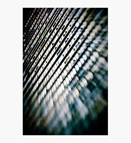 matrix Photographic Print