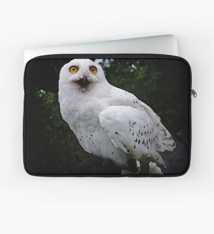 Snowy owl Laptop Sleeve