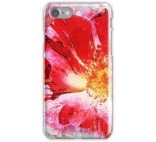 4th of July Hard journal cover iPhone Case/Skin