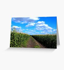 Cornfield Lane Greeting Card